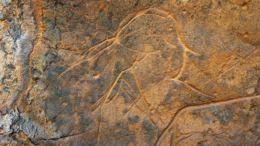 Engraved elephant, Acacus Mountains, Libya